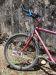 Nummernschildpflicht für Fahrräder in Panama