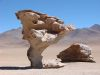 Arbol de Piedra - Steinbaum